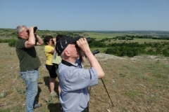 Birdwatching in Bulgaria
