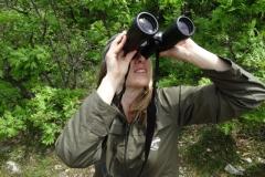 Наблюдение на птици