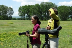 Birdwatching near the valley of the River Arda