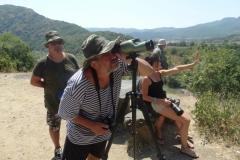 Наблюдаваме белоглави лешояди и колонията им в Природна забележителност Кован кая